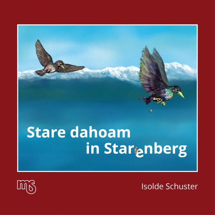Stare dahoam in Star(e)nberg